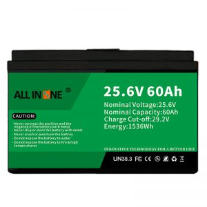 25.6V 60Ah safety/long life LFP battery for RV/Caravan/UPS/Golf Cart 24V 60Ah